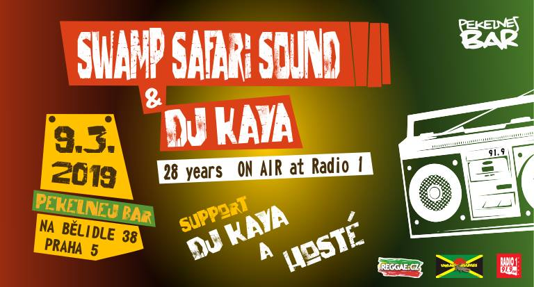 DJ Kaya 28 years ON AIR party